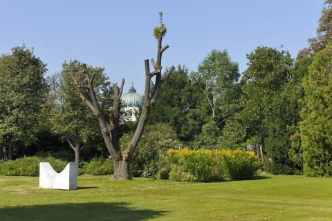 Natur am Zentralfriedhof