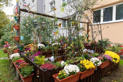 Bunte Pflanzenvielfalt