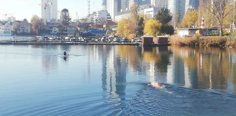 Wassersport an der Alten Donau