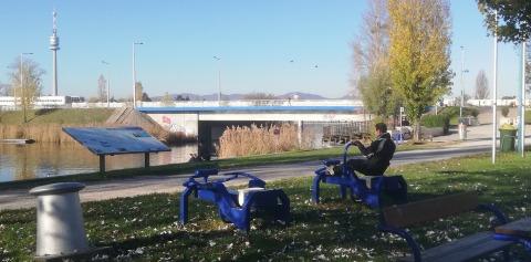 Sportler an der Alten Donau
