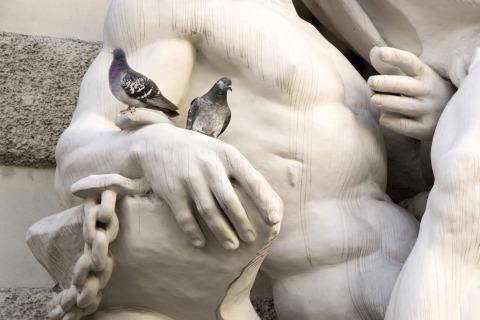 Taub auf Statue