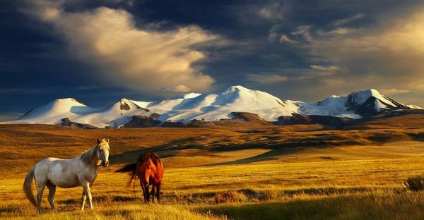 Work & Travel: 10 Urlaubsziele für Engagierte