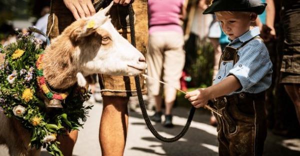 Salzburger Bauernherbst 2020: Klein, fein und zum Mitmachen