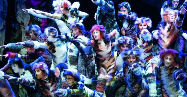 Musical ist zurück: Cats miauen wieder
