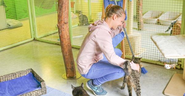 Tierisch cool: Ein Blick in die Tiroler Tierheime