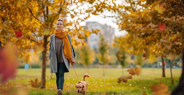 Top 3-Spaziergänge in Wien