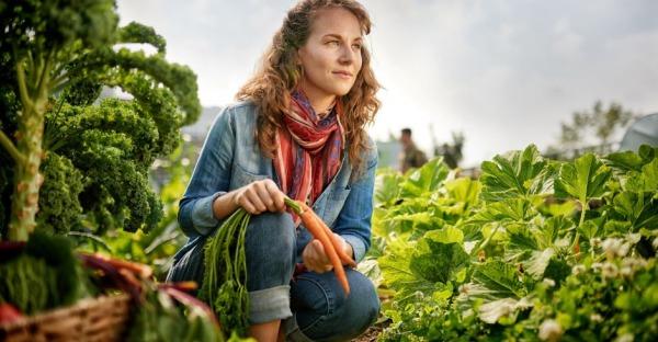Nachhaltiger leben in 5 einfachen Schritten