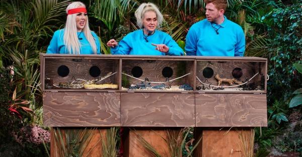 Dschungelshow: So scharf sah Bea Fiedler einmal aus