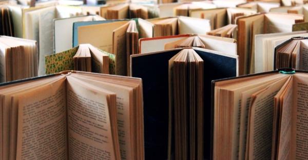 Literaturtipps: Die besten Corona-Bücher aus Kärnten