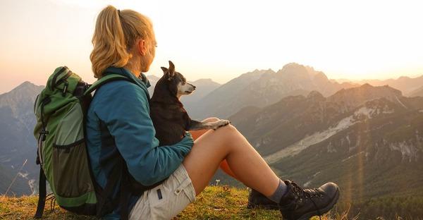 Wandern mit Hund: 5 Tipps für den trendigen Outdoorspaß