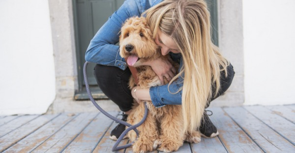 Hund trotz Allergie – mit diesen Rassen ist es möglich