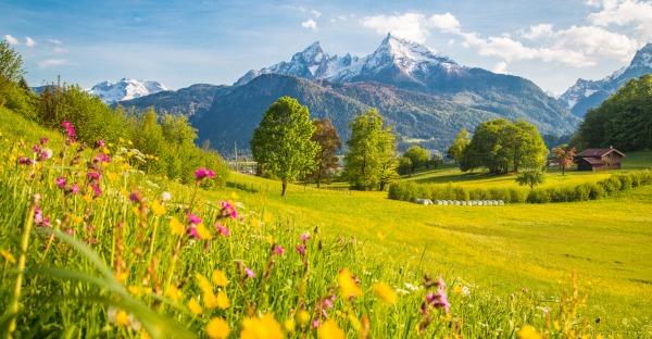 Frage der Woche: Urlaub im In- oder Ausland?