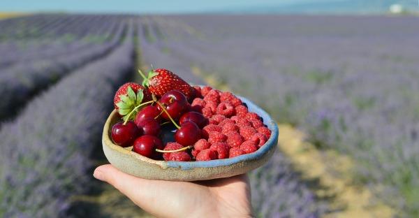 Erdbeere, Kirsche und Co: 6 leckere Sommerdrinks