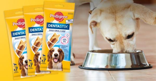 Pedigree® Dentastix™ Packages zu gewinnen!
