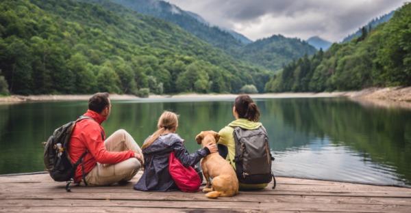 Die 5 hundefreundlichsten Hotels in Niederösterreich