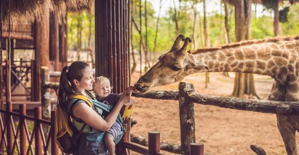 Die besten Zoos in Europa