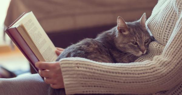 Diese 5 Bücher helfen bei Unruhe und Stress