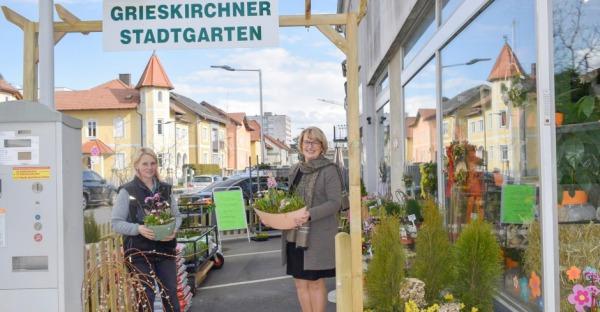 Blumen Johanik: Blumen für jeden Anlass