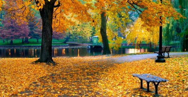 Warum der Herbst in Boston am schönsten ist